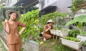 Nhật Kim Anh hóa 'nông dân' chăm sóc vườn rau xanh mướt vào mùa dịch