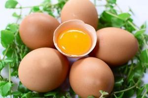 4 thực phẩm đại bổ nhưng chớ dại cho con ăn khi đang bị sốt